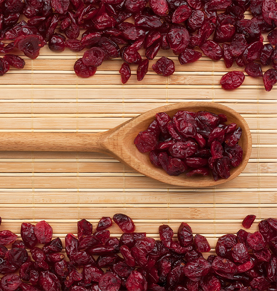 Dried Cranberries Spoon