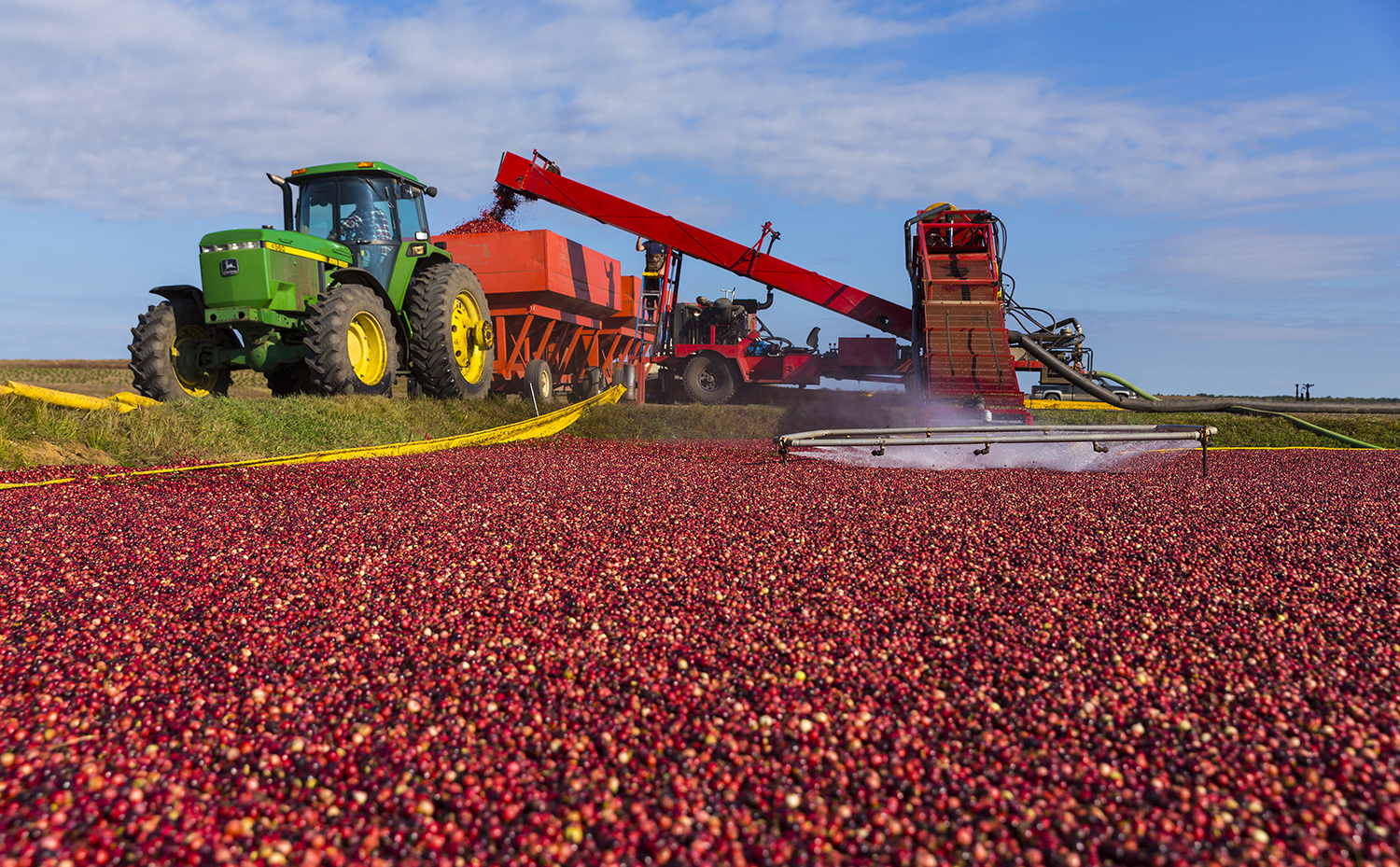 2018 Fall Cranberry Festivals